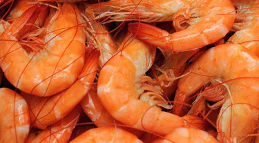 boiled-louisiana-shrimp